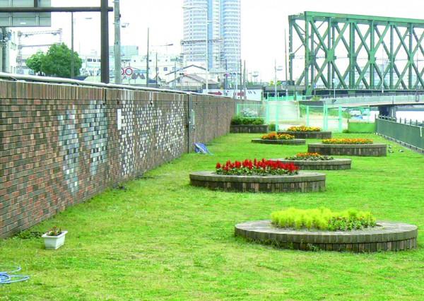 尻無川河川広場 (8)